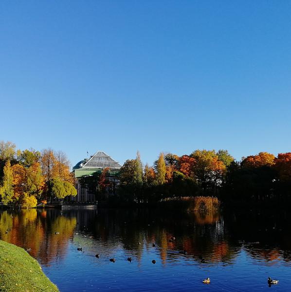 Краски осени. Таврический сад