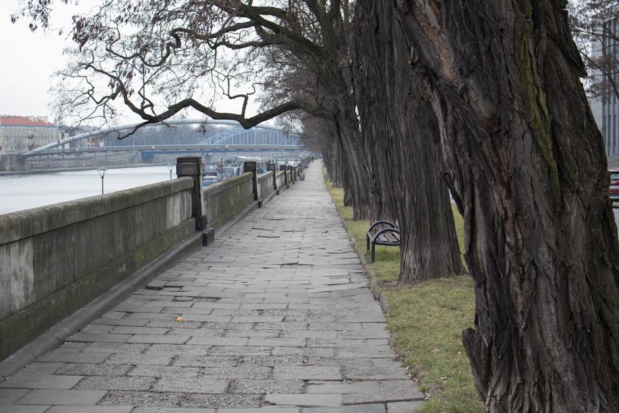 Прогулка по весеннему Кракову в конце февраля