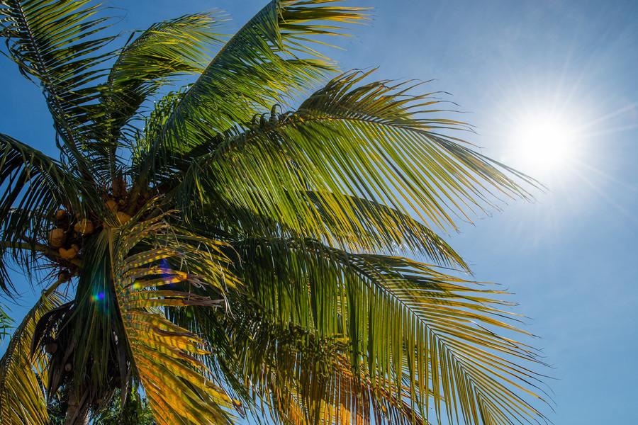 Солнечный Варадеро в ноябре