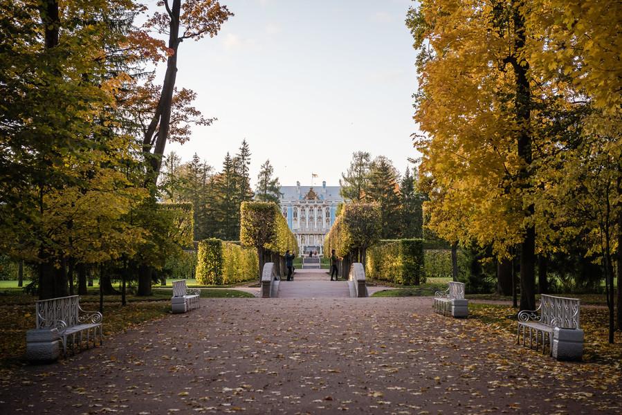 Царское село, 2019 осень