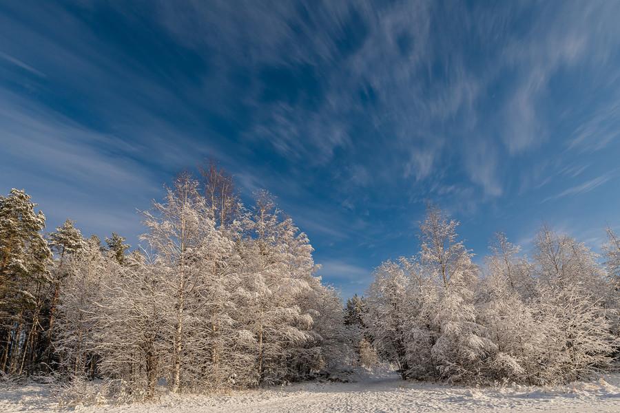 В Карелию пришла зима