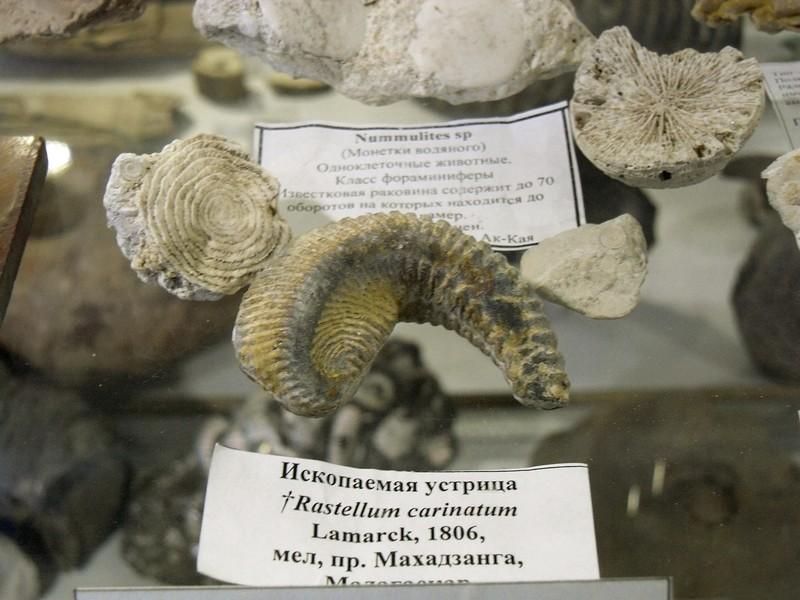 "Барнаул. Музей ""Мир камня"""
