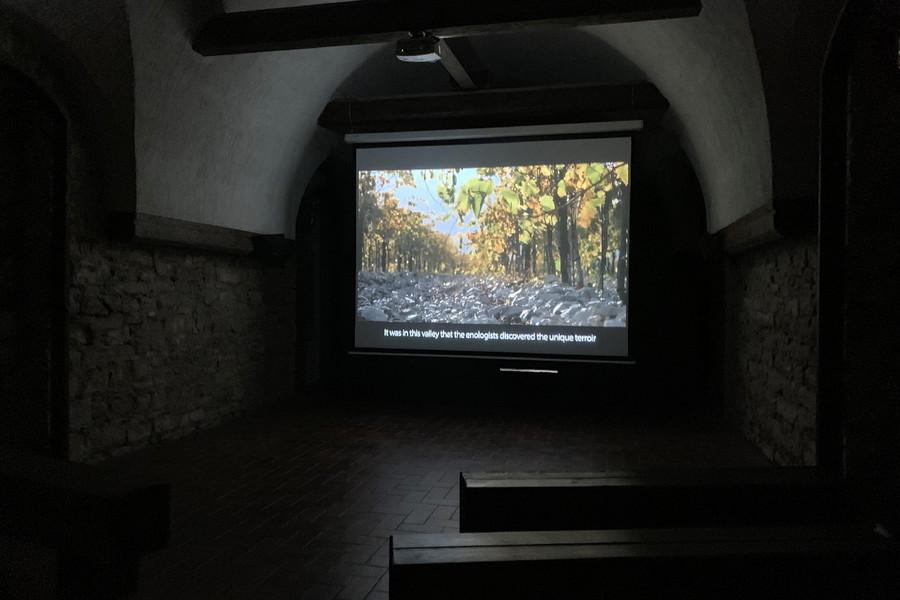 """Экскурсия на завод вин """"Абрау-Дюрсо"""" (город Новороссийск)"""