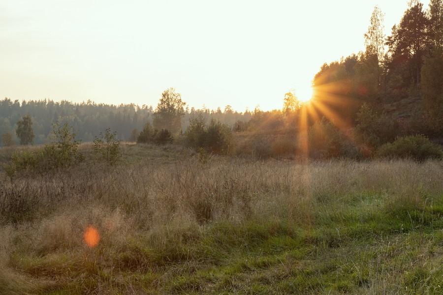 Северное Приладожье. Осень