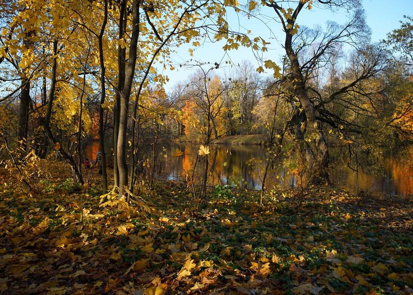 Центральный парк культуры и отдыха имени Кирова