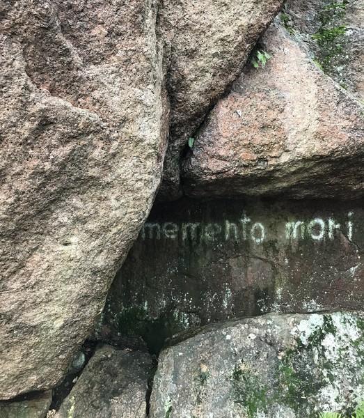 Выборгский музей-заповедник Парк Монрепо