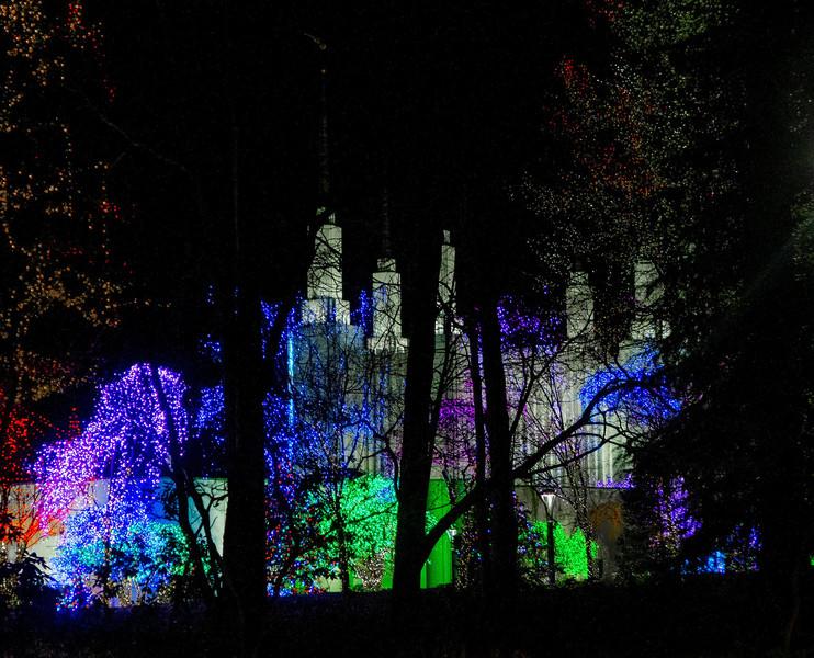 Фестиваль огней. Храм мормонов в Вашингтоне