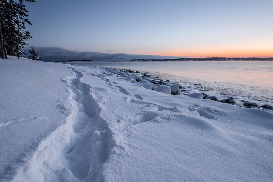 Койонсаари. Небольшой стров в Ладожском озере