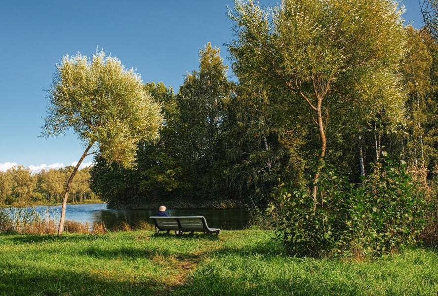 Петергоф. Английский парк