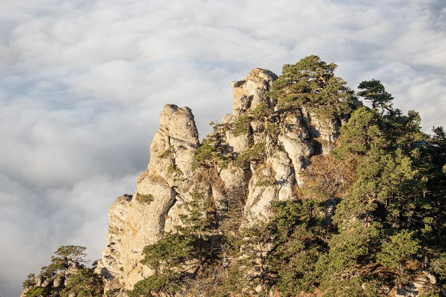 Гора Демерджи. Крым