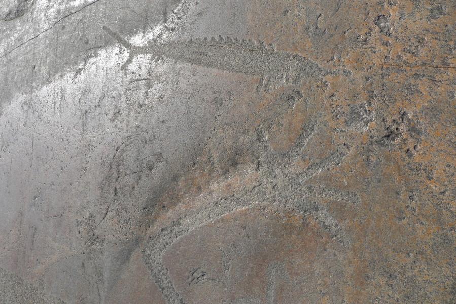 Наскальные изображения мыса Бесов Нос