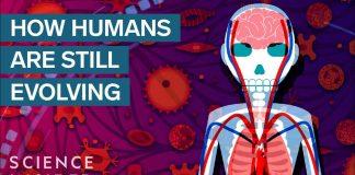 3-Surprising-Ways-Humans-Are-Still-Evolving