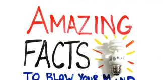 Amazing-Facts-to-Blow-Your-Mind-Pt.-1