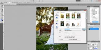 How-to-Automate-Your-Photography-Logo-and-Shrinking-for-Web