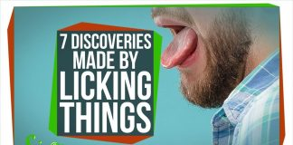 7-Discoveries-Scientists-Made-by-Licking-Things