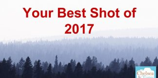 Your-BEST-Shot-of-2017-TC-LIVE