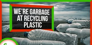 Why-We39re-So-Bad-at-Recycling-Plastic