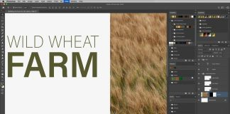 How-to-Use-New-Presets-in-Photoshop