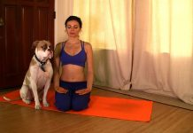 Pranayama-and-Meditation-Video-and-a-Monthly-challenge
