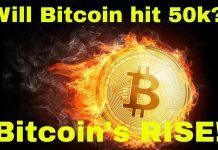 Will-Bitcoin-will-hit-50K-The-Herd-is-Coming-Bullish