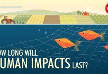 How-long-will-human-impacts-last-David-Biello
