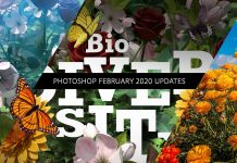 How-to-Utilize-the-February-Photoshop-Updates-PHOMO