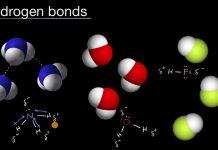 Hydrogen-bonds