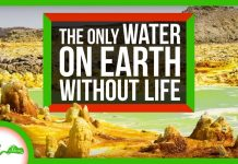 The-Only-Water-on-Earth-Without-Life